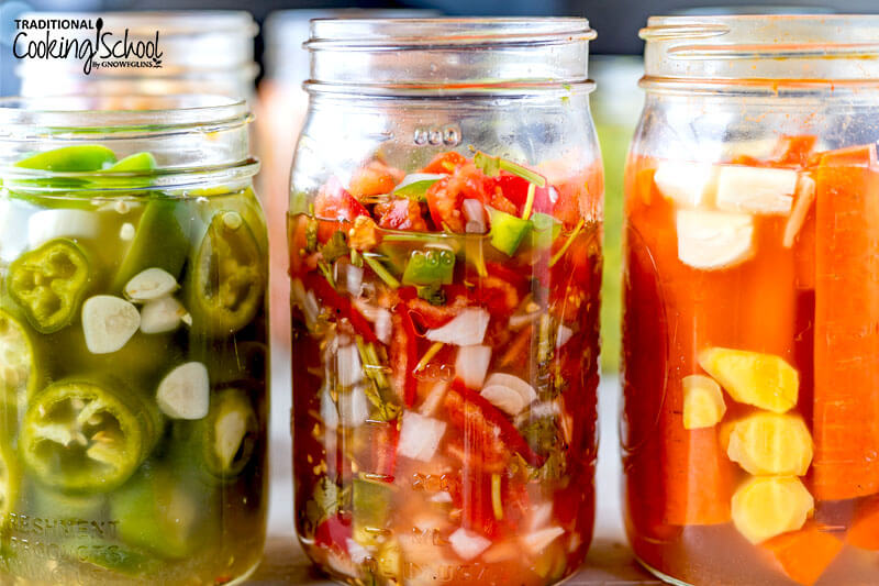 Close-up shots of different ferments submerged in brine: jalapenos, salsa, carrot sticks.